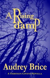 A rising Damp 2