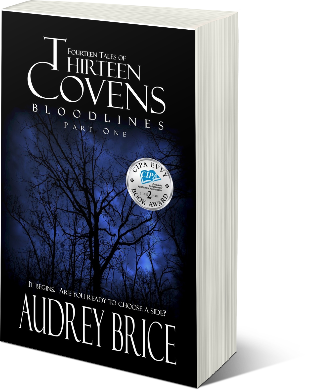 Thirteen Covens has won an EVVY Award!